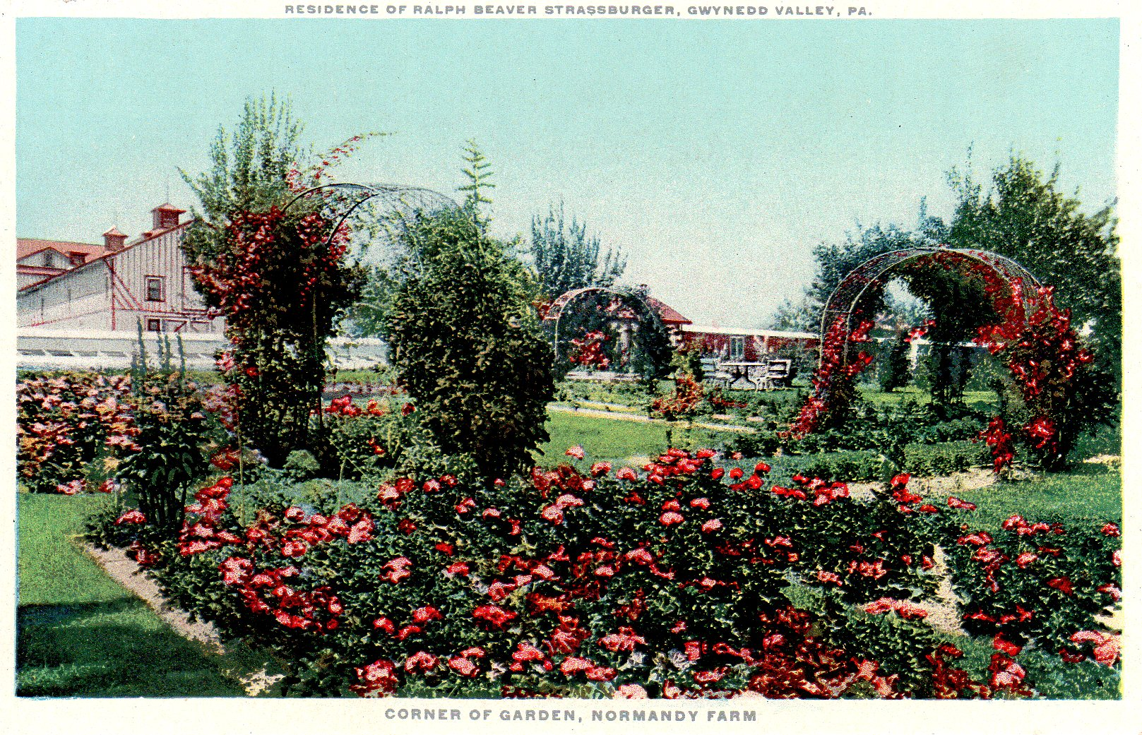 Post Card Collection (E Simon)_2682_83_Home Ralph Beaver Strassburger, Gwynedd Valley, Pa_Corner of Garden, Normandy Farm