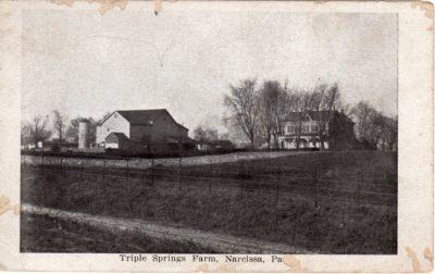 4500_072_Broad Axe PA Postcard_Triple Springs Farm, Narcissa PA